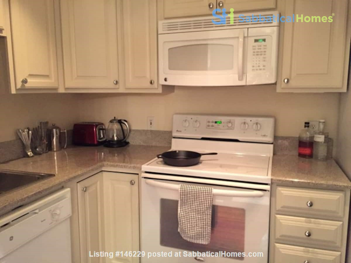 Elegant furnished 1-bedroom condo in French Quarter Home Rental in New Orleans 6
