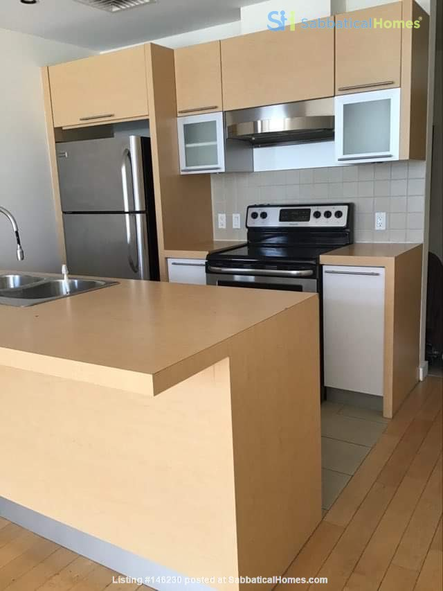 Bright new 1 bedroom condo near Old Port and UQAM Home Exchange in Montréal 1