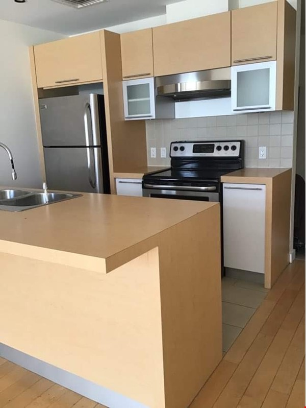 Bright new 1 bedroom condo near Old Port and UQAM Home Exchange in Montréal 1 - thumbnail