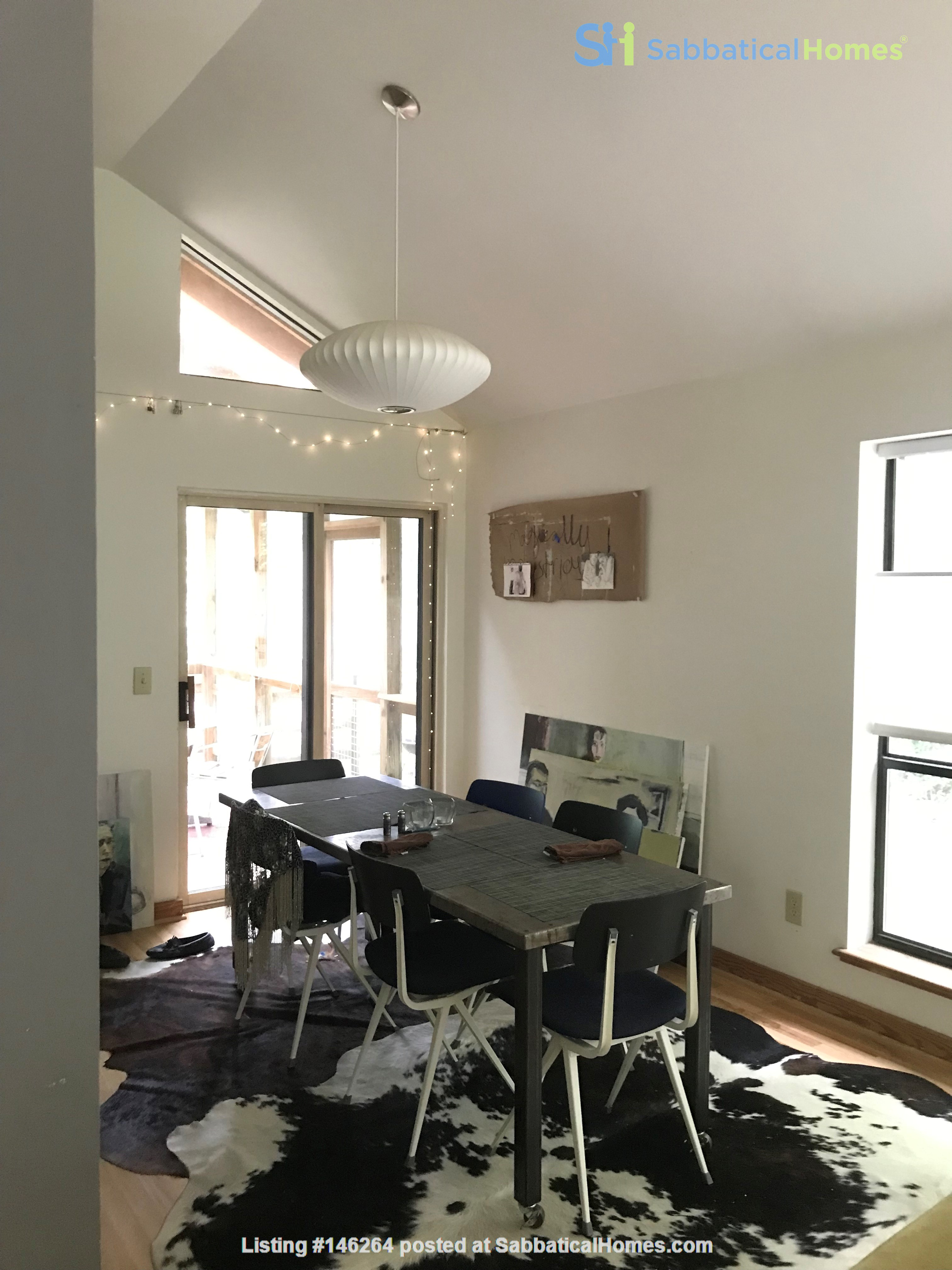 Great college town with nice weather & playful, friendly cats. Home Rental in Carrboro 1