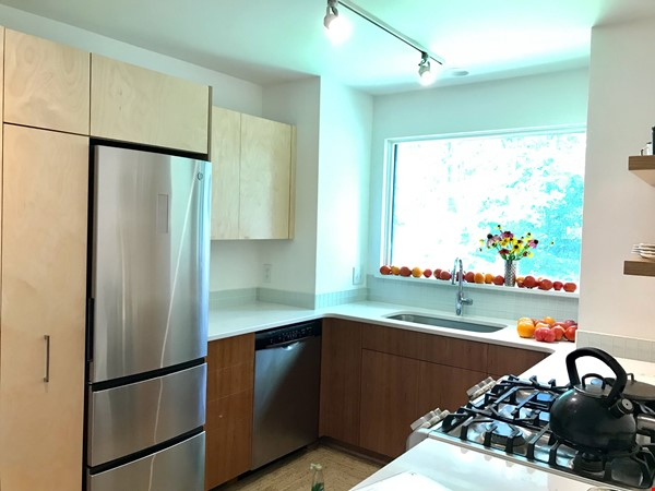 Great college town with nice weather & playful, friendly cats. Home Rental in Carrboro 2 - thumbnail