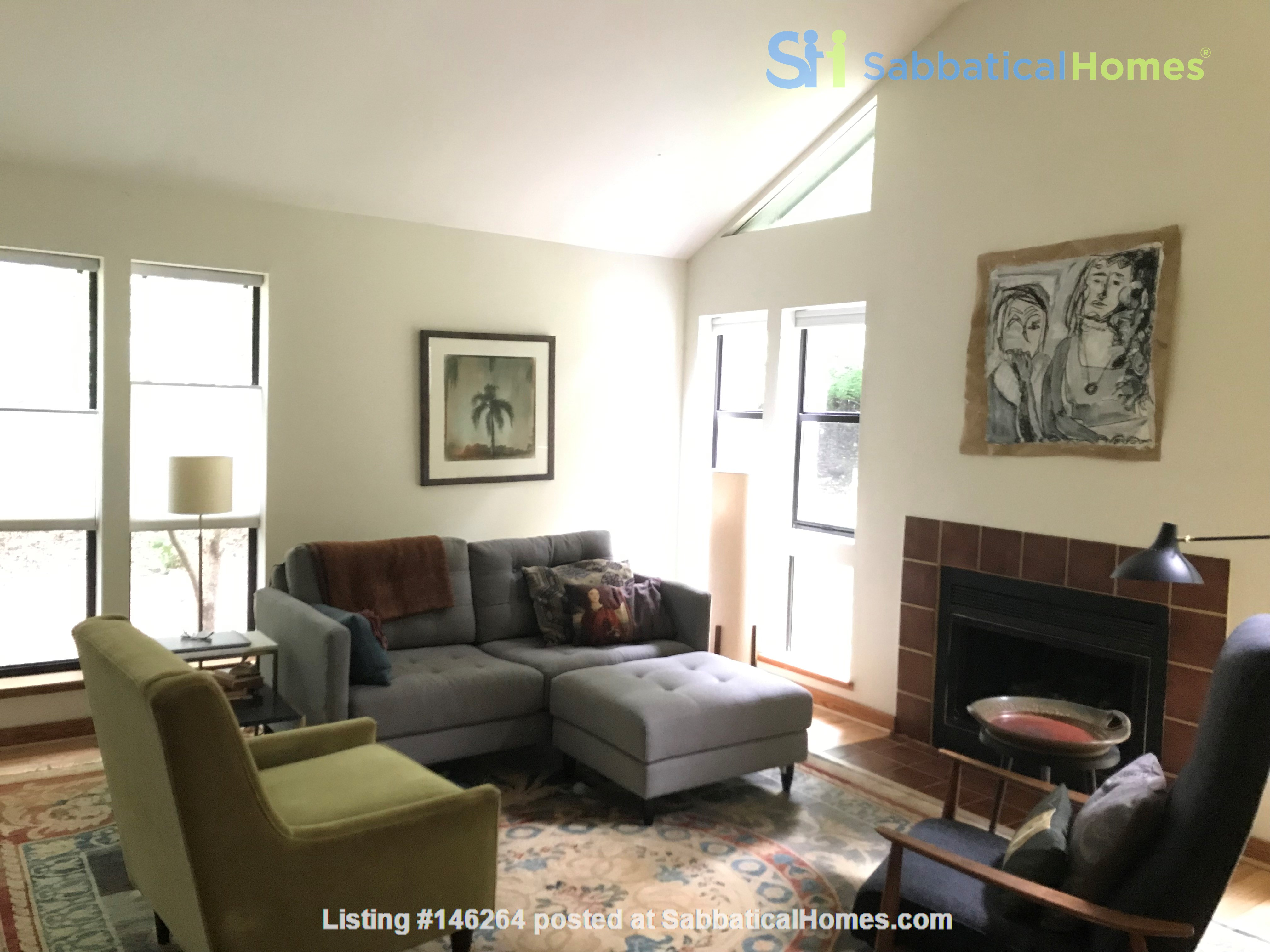 Great college town with nice weather & playful, friendly cats. Home Rental in Carrboro 0