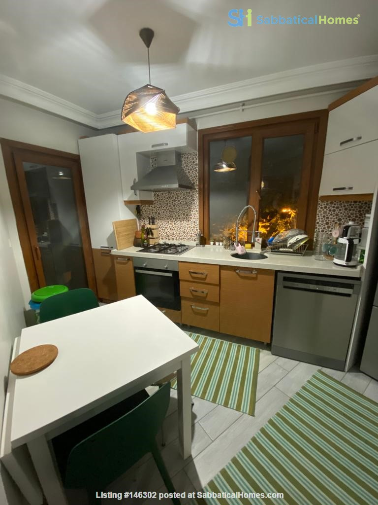 Serene Apartment Duplex in Üsküdar (Fully Furnished) Home Rental in  3