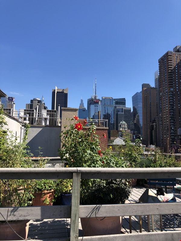 Beautiful Spacious 2BR/2 full bath duplex in Midtown w/outdoor space for'22 Home Rental in New York 2 - thumbnail